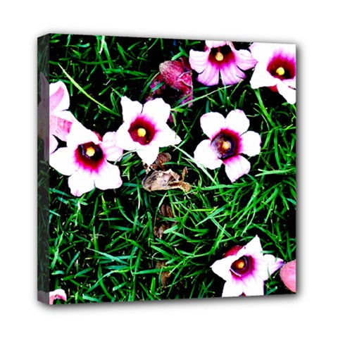 Pink Flowers Over A Green Grass Mini Canvas 8  X 8