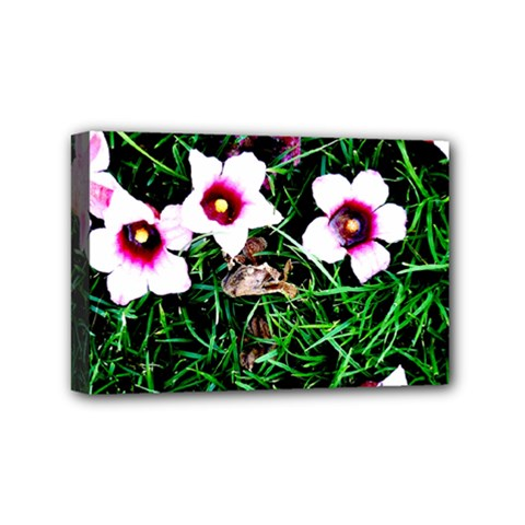 Pink Flowers Over A Green Grass Mini Canvas 6  X 4