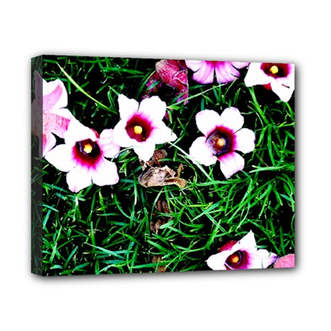 Pink Flowers Over A Green Grass Canvas 10  X 8