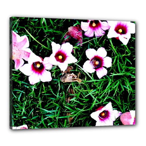Pink Flowers Over A Green Grass Canvas 24  X 20