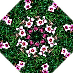 Pink Flowers Over A Green Grass Folding Umbrellas