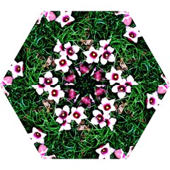 Pink Flowers Over A Green Grass Mini Folding Umbrellas