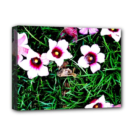 Pink Flowers Over A Green Grass Deluxe Canvas 16  X 12