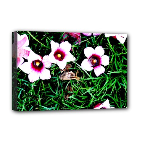 Pink Flowers Over A Green Grass Deluxe Canvas 18  X 12