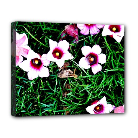 Pink Flowers Over A Green Grass Deluxe Canvas 20  X 16   by DanaeStudio