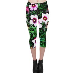 Pink Flowers Over A Green Grass Capri Leggings