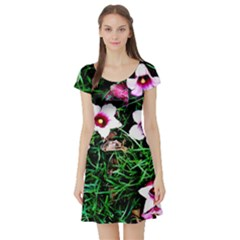 Pink Flowers Over A Green Grass Short Sleeve Skater Dress