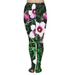 Pink Flowers Over A Green Grass Women s Tights by DanaeStudio