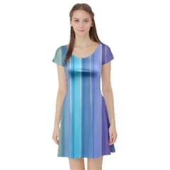 Provence Fields Lavender Pattern Short Sleeve Skater Dress