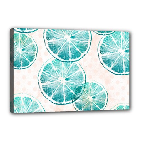 Turquoise Citrus And Dots Canvas 18  X 12  by DanaeStudio
