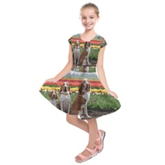 Bracco Italiano Group Kids  Short Sleeve Dress by TailWags