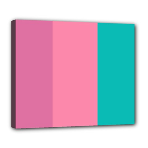 Pink Blue Three Color Deluxe Canvas 24  X 20   by AnjaniArt