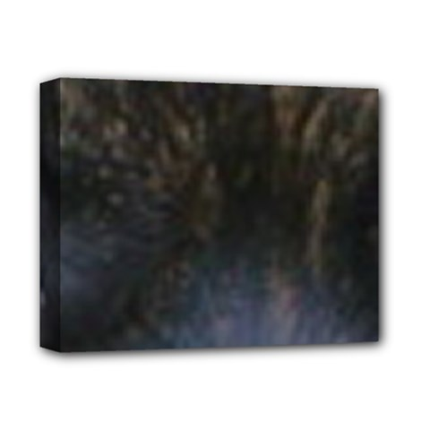 Bullmastiff Eyes Deluxe Canvas 14  x 11  by TailWags