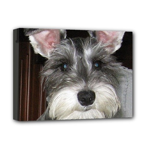 Mini Schnauzer Deluxe Canvas 16  x 12   by TailWags