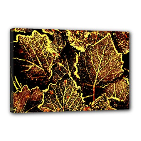 Leaves In Morning Dew,yellow Brown,red, Canvas 18  X 12  by Costasonlineshop