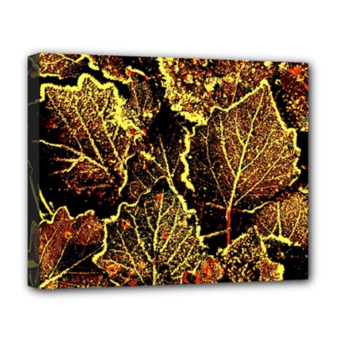 Leaves In Morning Dew,yellow Brown,red, Deluxe Canvas 20  X 16