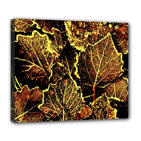Leaves In Morning Dew,yellow Brown,red, Deluxe Canvas 24  X 20   by Costasonlineshop