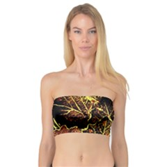 Leaves In Morning Dew,yellow Brown,red, Bandeau Top