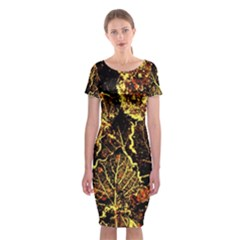 Leaves In Morning Dew,yellow Brown,red, Classic Short Sleeve Midi Dress