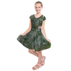 Bouvier Des Flandres Kids  Short Sleeve Dress by TailWags
