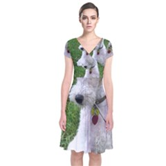 Wire Fox Terrier Sitting Short Sleeve Front Wrap Dress by TailWags