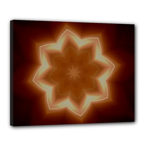 Christmas Flower Star Light Kaleidoscopic Design Canvas 20  X 16  by yoursparklingshop