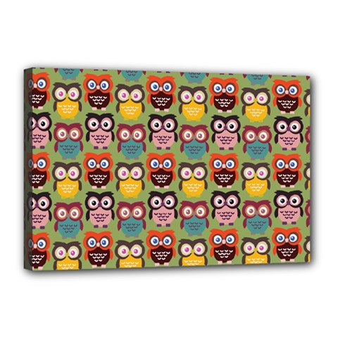 Eye Owl Colorful Cute Animals Bird Copy Canvas 18  X 12  by AnjaniArt