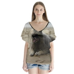 Keeshond On Beach  Flutter Sleeve Top by TailWags