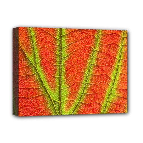 Unique Leaf Deluxe Canvas 16  X 12   by AnjaniArt