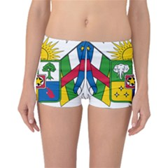 Coat of Arms of The Central African Republic Boyleg Bikini Bottoms by abbeyz71