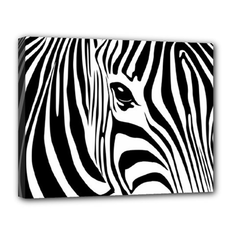 Animal Cute Pattern Art Zebra Canvas 14  X 11  by Amaryn4rt