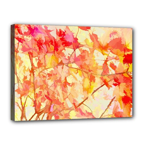 Monotype Art Pattern Leaves Colored Autumn Canvas 16  X 12  by Amaryn4rt