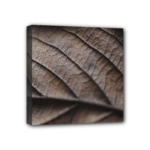 Leaf Veins Nerves Macro Closeup Mini Canvas 4  X 4  by Amaryn4rt