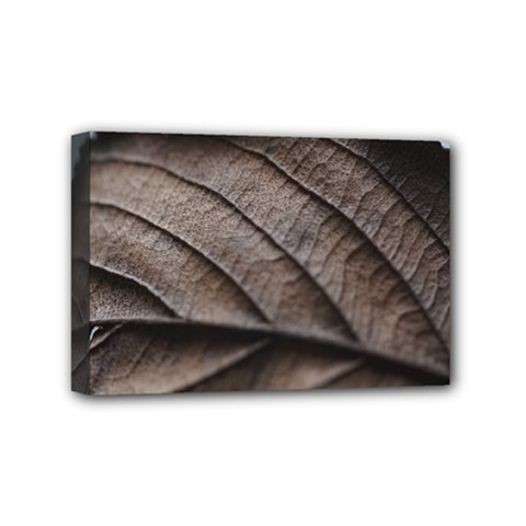 Leaf Veins Nerves Macro Closeup Mini Canvas 6  X 4  by Amaryn4rt
