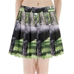 Giant Schnauzer Full Pleated Mini Skirt by TailWags