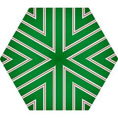Green Line Mini Folding Umbrellas by Jojostore