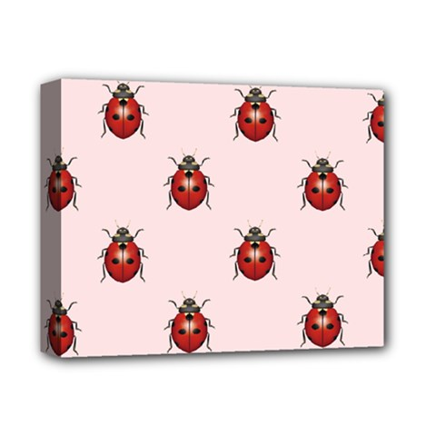 Insect Animals Cute Deluxe Canvas 14  X 11  by Jojostore