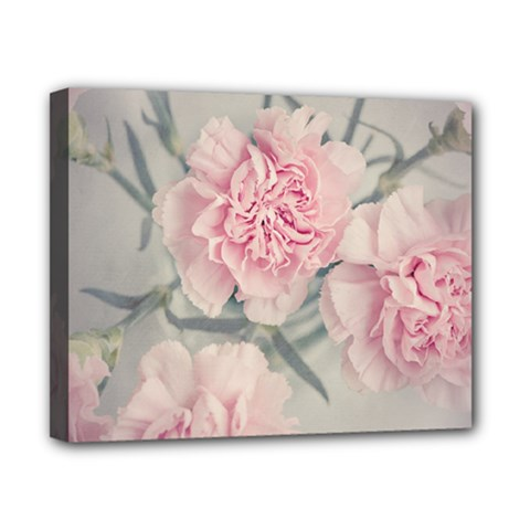 Cloves Flowers Pink Carnation Pink Canvas 10  X 8  by Amaryn4rt