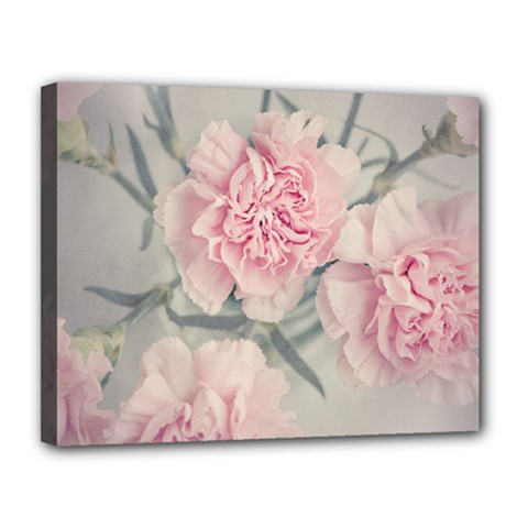 Cloves Flowers Pink Carnation Pink Canvas 14  X 11  by Amaryn4rt