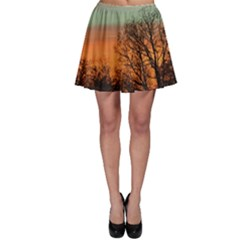 Twilight Sunset Sky Evening Clouds Skater Skirt