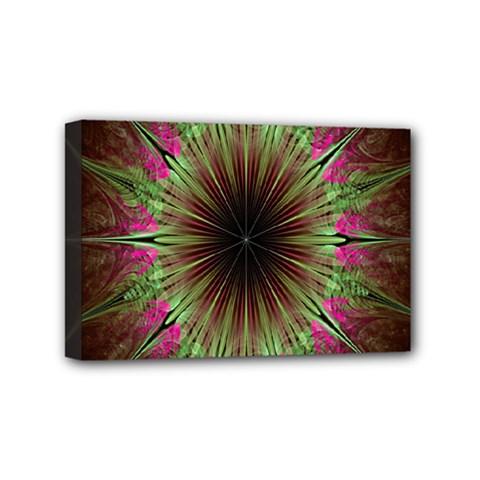 Julian Star Star Fun Green Violet Mini Canvas 6  X 4  by Amaryn4rt