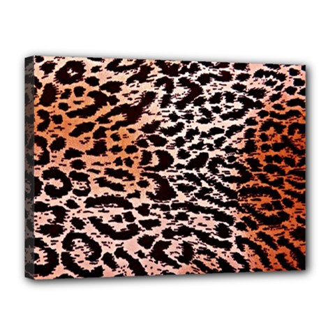 Tiger Motif Animal Canvas 16  X 12