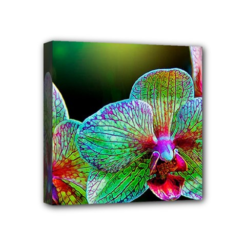 Alien Orchids Floral Art Photograph Mini Canvas 4  X 4  by Onesevenart