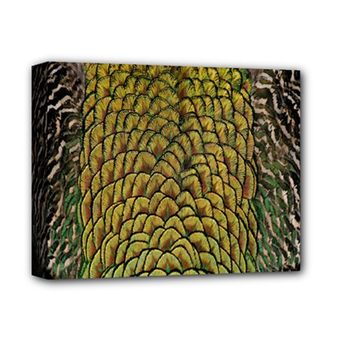 Peacock Bird Feather Color Deluxe Canvas 14  X 11  by AnjaniArt