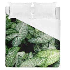 Green Leaves Nature Pattern Plant Duvet Cover (queen Size) by Amaryn4rt