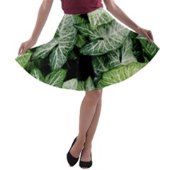 Green Leaves Nature Pattern Plant A Line Skater Skirt by Amaryn4rt