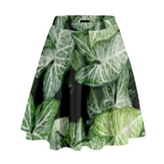 Green Leaves Nature Pattern Plant High Waist Skirt by Amaryn4rt