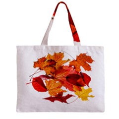 Autumn Leaves Leaf Transparent Zipper Mini Tote Bag by Amaryn4rt