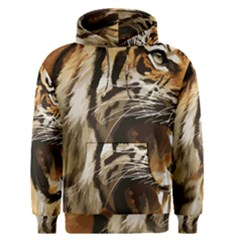 Royal Tiger National Park Men s Pullover Hoodie