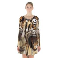 Royal Tiger National Park Long Sleeve Velvet V Neck Dress by Amaryn4rt